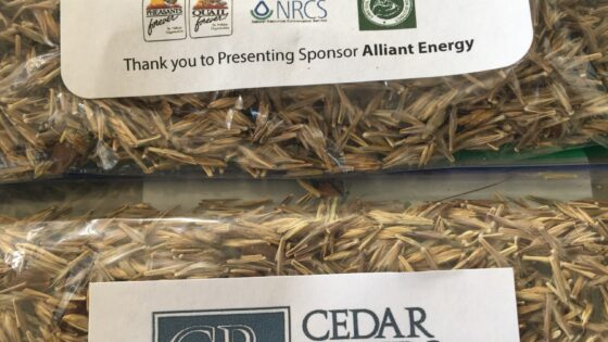 Linn County Pollinator Seed Mix